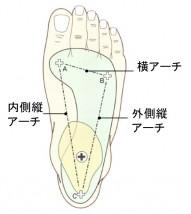 インソールと足の話① -足の-アーチ-